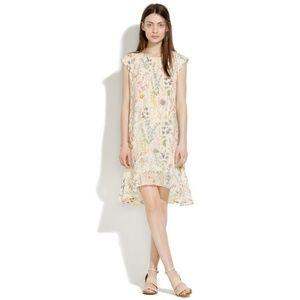 Madewell Garden Gate Dress